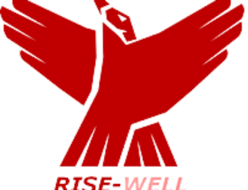 EU-project Rise-Well – cRitIcal Solutions for Elderly WELL-being